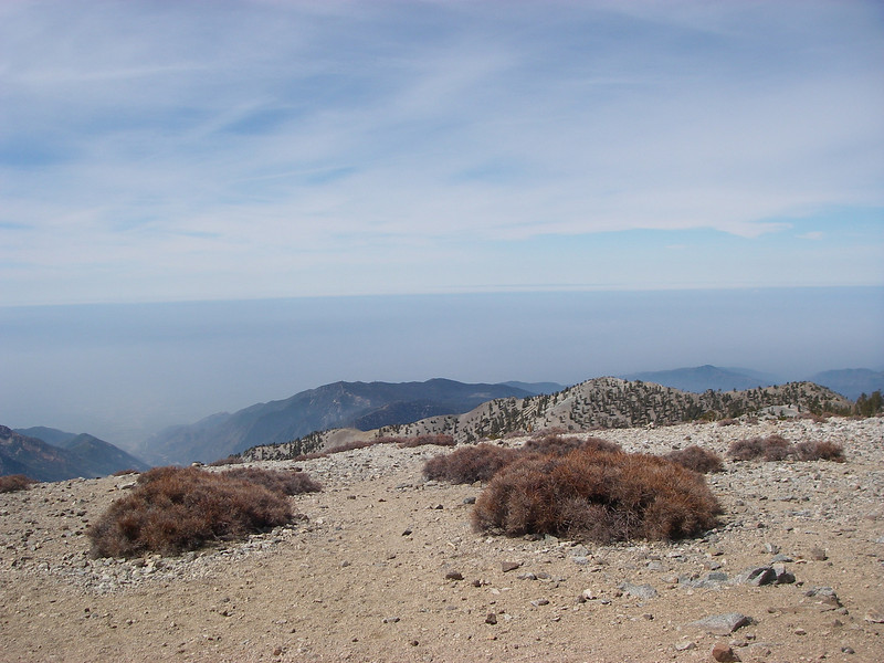 At the top of Mt.Baldy (10,064ft = 3.068m) 2