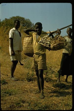 Barotseland 1956-59
