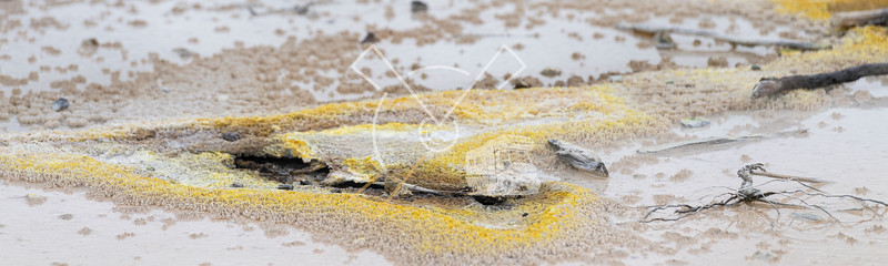 Abstract patterns with sulfur at the Artist's palette and Primrose terraces of the Waiotapu geothermal area in Rotorua