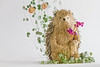 Fashionable, hipster toy hedgehog made of pines and plants holding dried flowers and wrapped by String of Hearts plants