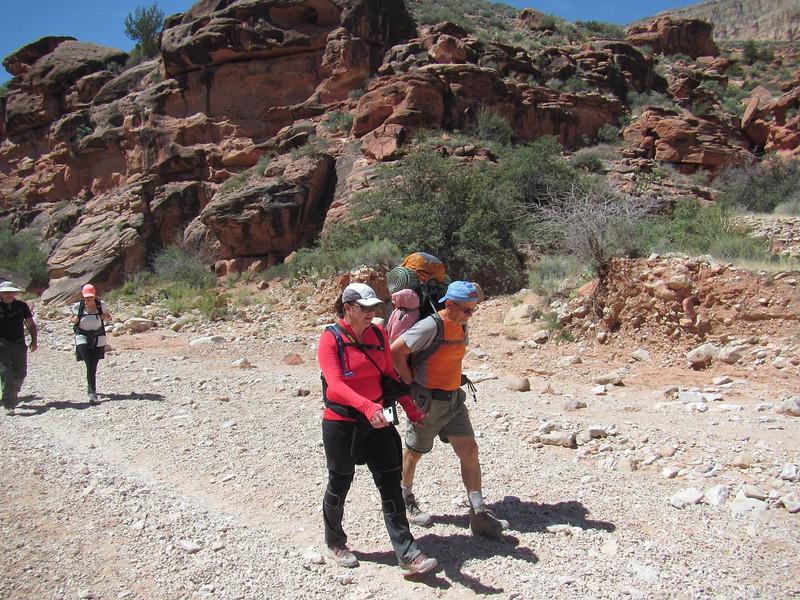 At the bottom of Hualapai Canyon