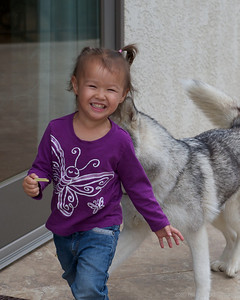 2011 Java Puppies