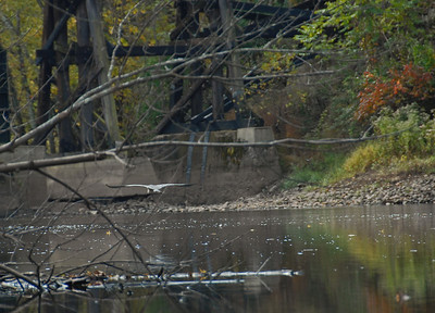 2009-10-21 Passaic River Kayak Trip