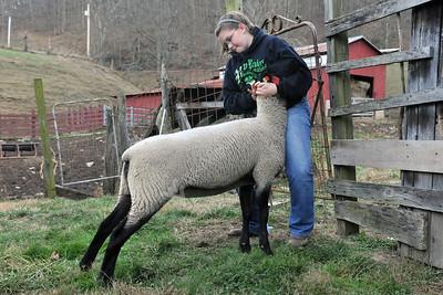 27250 4 H farm pictures