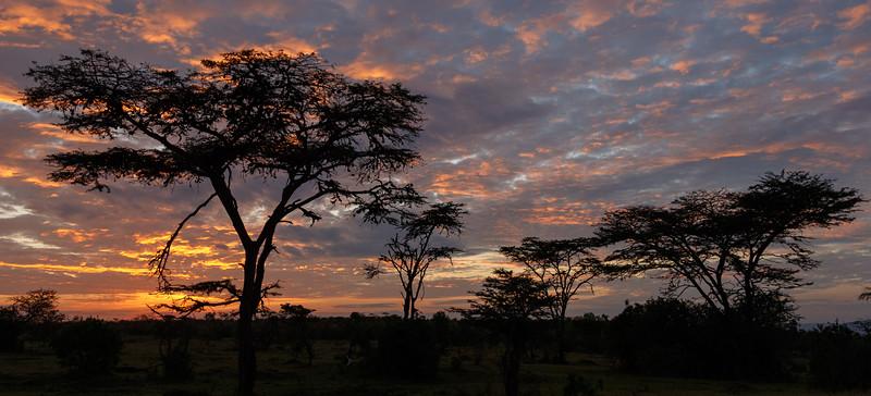 Kenya 2015-10130.jpg