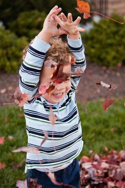 Ty Fall Nov 2010