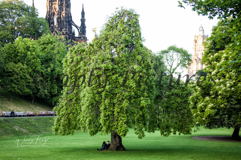 Edinburgh  (20)