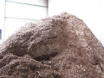 Hollabrunn Biomass Plant
