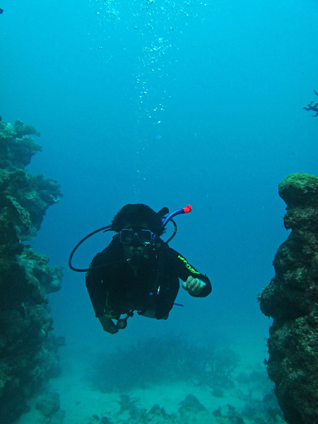 Scuba diving at Great Barrier reef - my dive buddy Zong