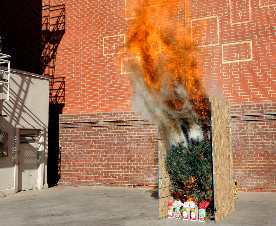 ". The dangers of having a dry Christmas Tree could be complety in a few moments and destroyed everything in the room. Pasadena Fire Chief Calvin Wells, and Police Department Police Chief Phillip Sanchez discussed safety tips for the holidays, including a new year-round Pasadena Police Department program ""See Something Say Something\"" at Fire Station 33 in Pasadena Monday, November 25, 2013. (Photo by Walt Mancini/Pasadena Star-News.)"