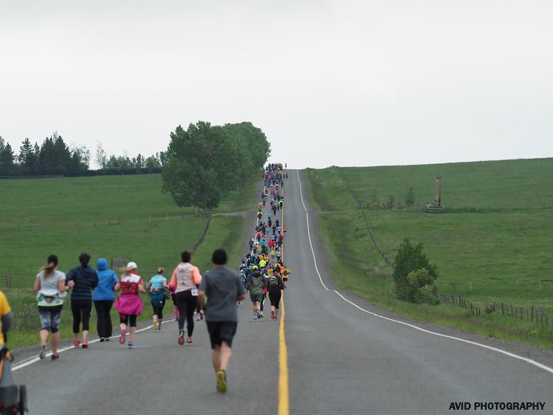 Millarville Marathon 2018 (333).jpg