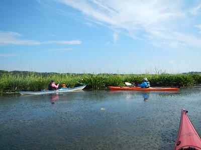 Mattawoman Creek 7-21-13