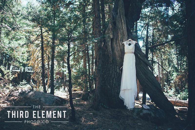 Third Element Photo Co Brittney + Errol Yosemite Wedding Hetch Hetchy San Francisco_0002.jpg