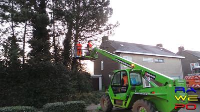 20170126 Ravelse plantsoendienst rooit bomen Nieuwe Stationsstraat