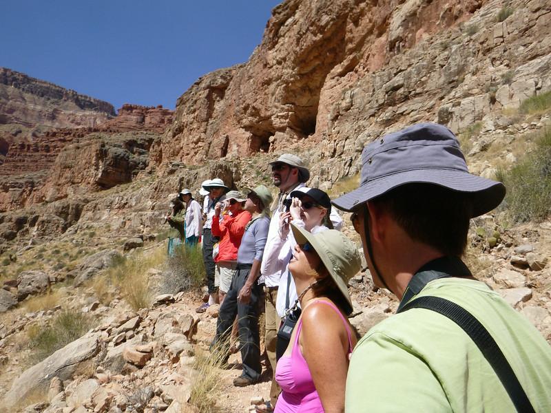 Grand Canyon Oba 014.jpg
