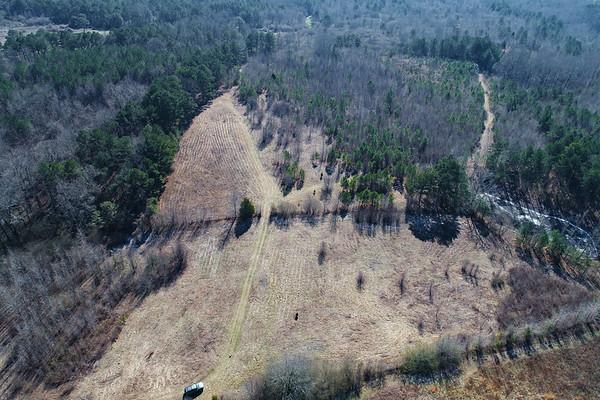 40 acres in Hayden aerials