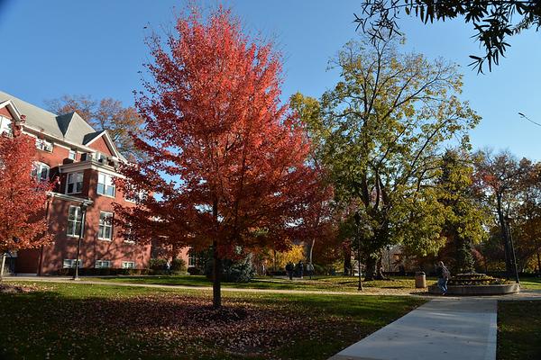 campus2564-L.jpg