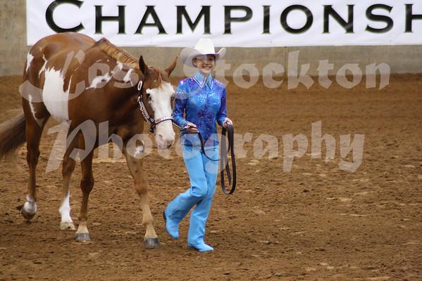 2010.06.14 - World Pinto Horse Show