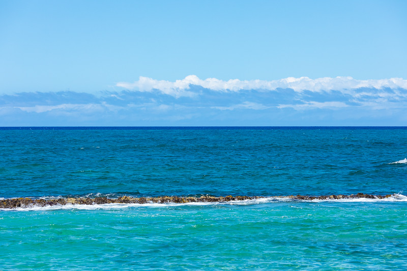 Travel_Hawaii_03052020_0151.jpg