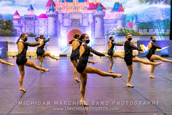 Michigan Dance Team