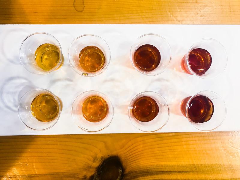 maple syrup tasting 2-4.jpg