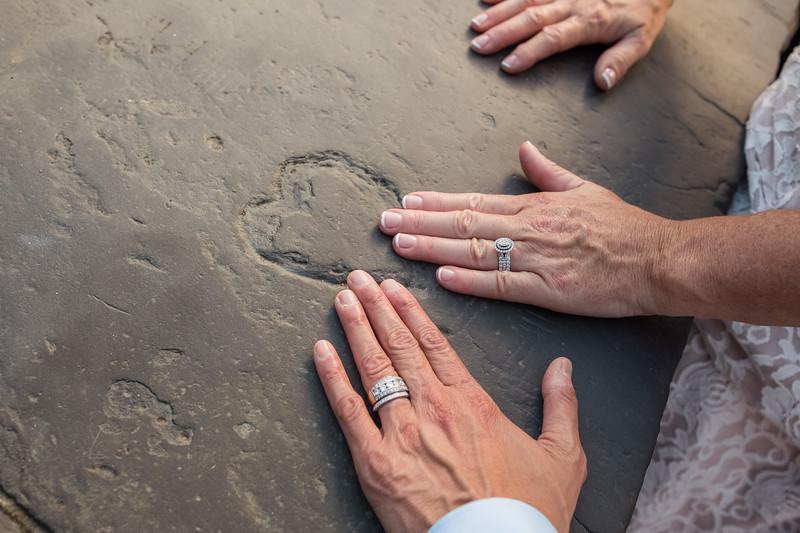 Central Park Wedding - Beth & Nancy-132.jpg