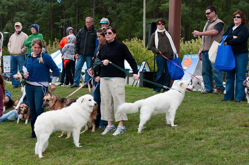 2011 Bark in the Park-158.jpg