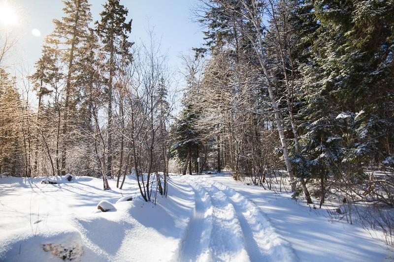 Snowshoeing15-2-013-1.jpg