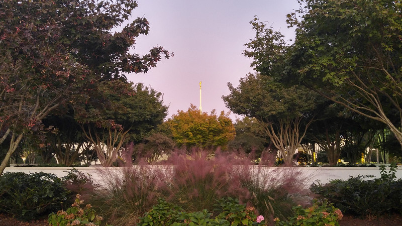 AtlantaTempleGrounds6.jpg