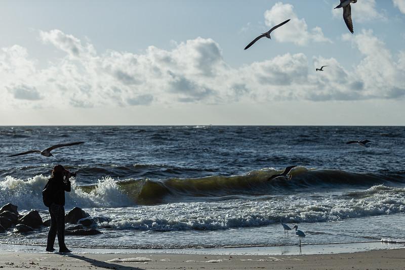 (JOSEPH FORZANO / THE PALM BEACH POST)