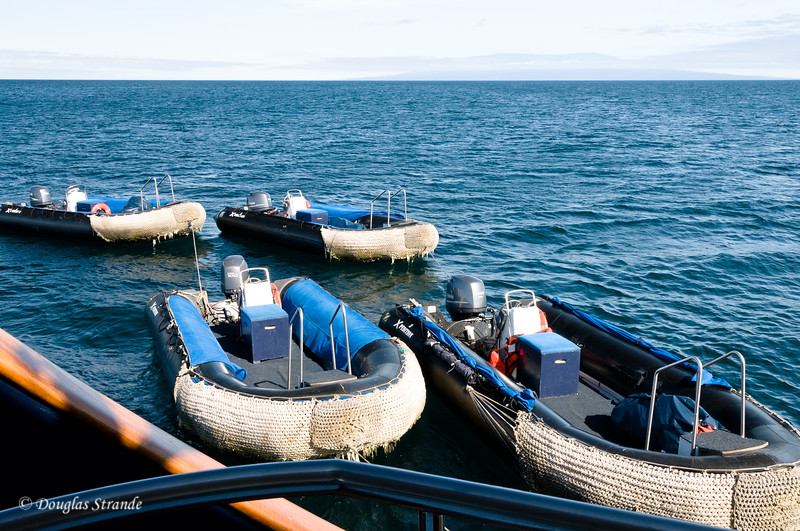 The Xpedition's fleet of Zodiacs or Pangas