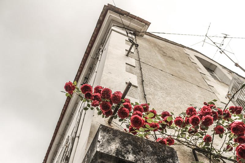 La Via en Roses