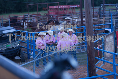 2017 WCF Rodeo - Friday