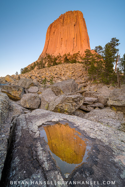 Devil's Tower in a Puddle