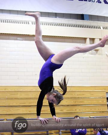 South v Southwest Gymnastics 1-12-11