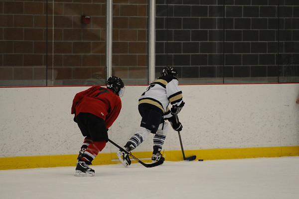 D.C. Snipers vs Vancouver Whalers