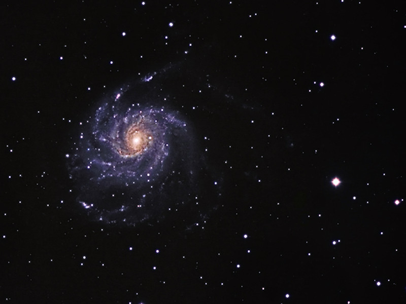 M101   Location: Gibsonia, PA  Equipment: ATIK 383L Camera for the Luminance and QHY8 for color Televue NP127is Refractor CGEM Mount   Software: Maxim DL Photoshop CS5