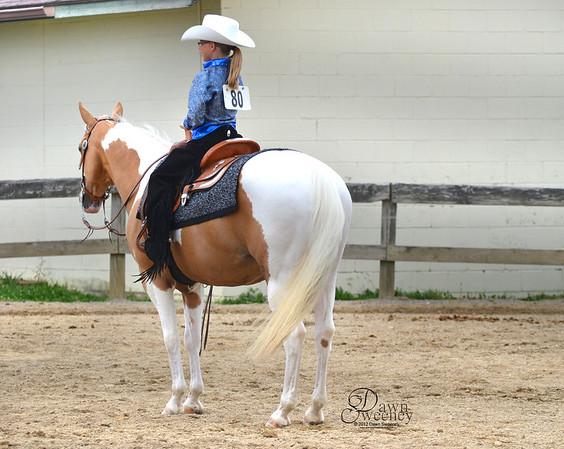 Meadville horse show