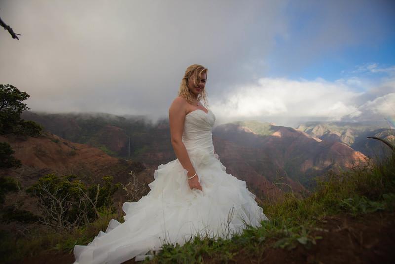 Kauai-trash-the-dress-36.jpg