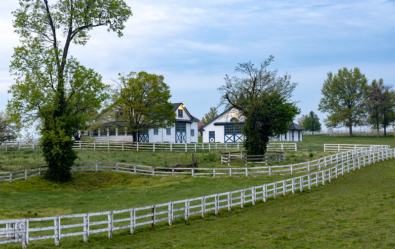 Manchester Horse Farm Lexington KY  April 25, 2019   019.jpg