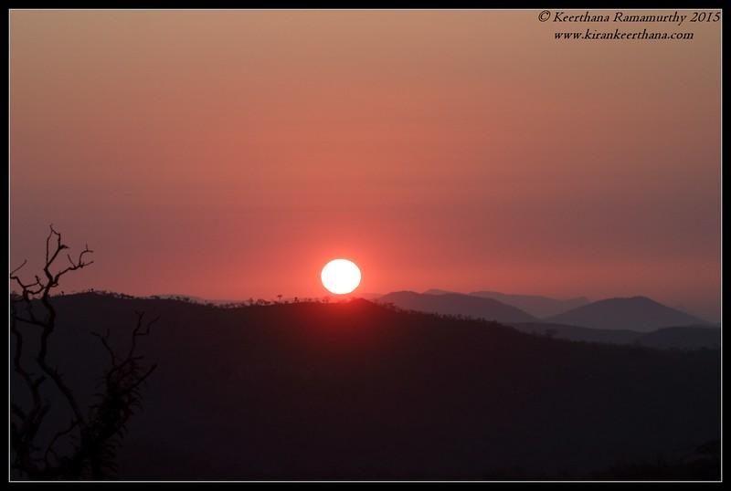 Sunrise, Bandipur, Karnataka, February 2015