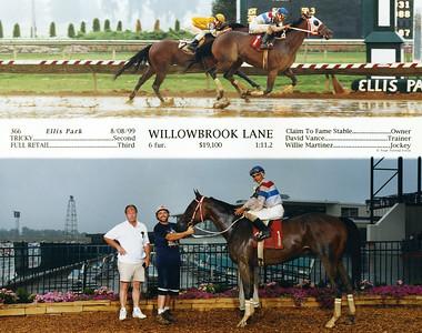 WILLOWBROOK LANE - 8/08/1999