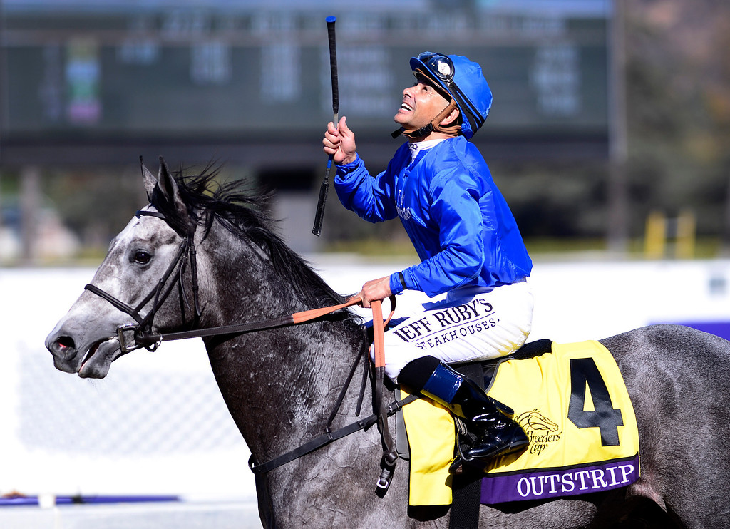 . Mike Smith celebrates winning the Breeders\' Cup Juvenile Turf with Outstrip at the Breeders\' Cup at Santa Anita Park in Arcadia Friday, November 1, 2013. (Photo by Sarah Reingewirtz/Pasadena Star-News)