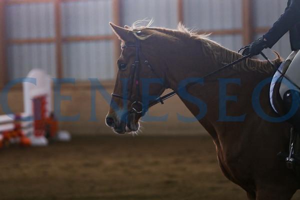 Equestrian (Photos by Ben Gajewski)