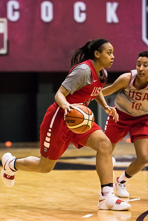 USA Women's Basketball National Team