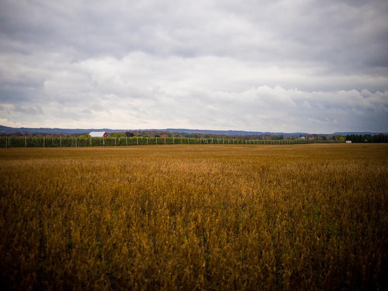 farm country.jpg