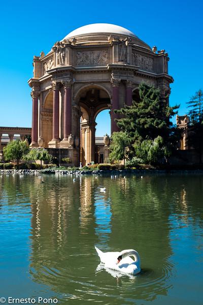 San Francisco - Palace of Fine Arts & Legion of Honor