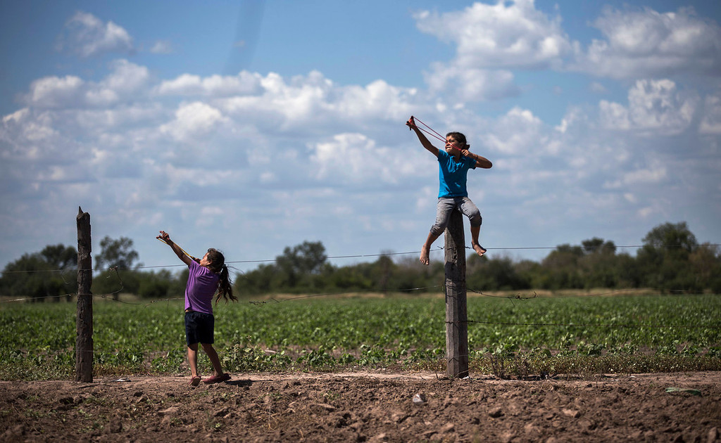 . Girls use slingshots next to a biotech soybean plantation in Avia Terai, in Chaco province, Argentina on May 31, 2013. The country\'s entire soybean crop and nearly all its corn and cotton have become genetically modified in the 17 years since St. Louis-based Monsanto Company promised huge yields with fewer pesticides using its patented seeds and chemicals. Instead, the agriculture ministry says agrochemical spraying has increased ninefold, from 9 million gallons in 1990 to 84 million gallons today. (AP Photo/Natacha Pisarenko)