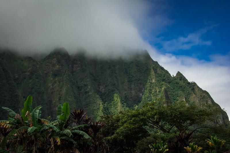 Hawaii-212.jpg