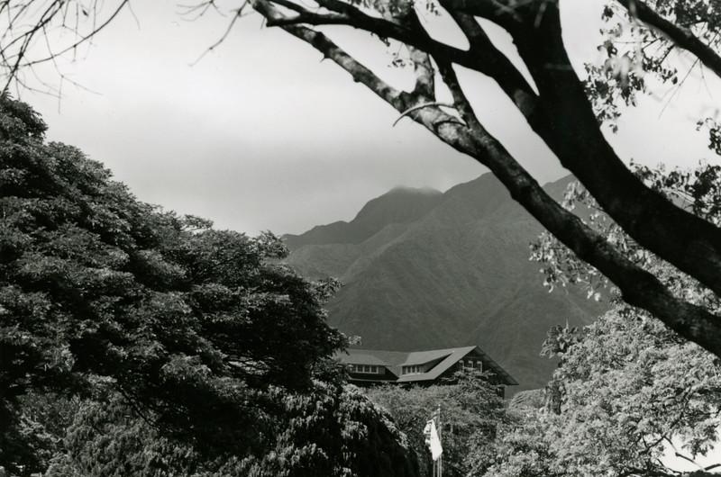 kawaiahao scenic.jpg